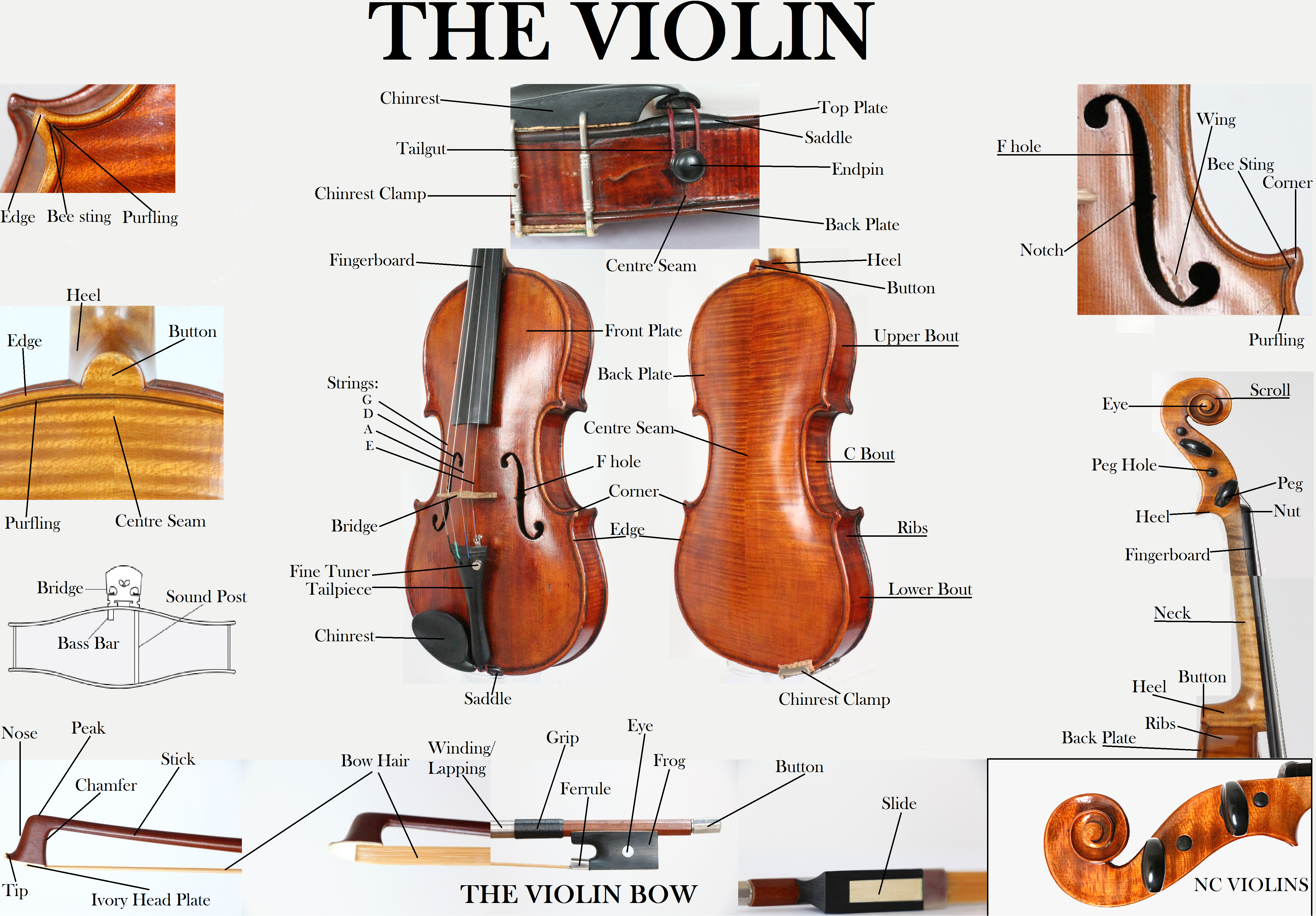 diagram of violin and bow parts nc violins rh ncviolins com violin bow parts diagram Violin Tailpiece